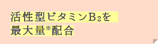 The maximum amount ※ incorporating the active form of vitamin B2